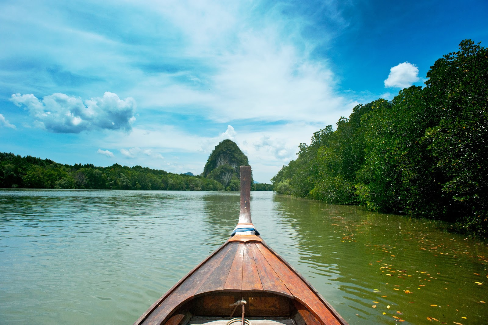 brown-wooden-canoe-near-trees-1031798 (1)